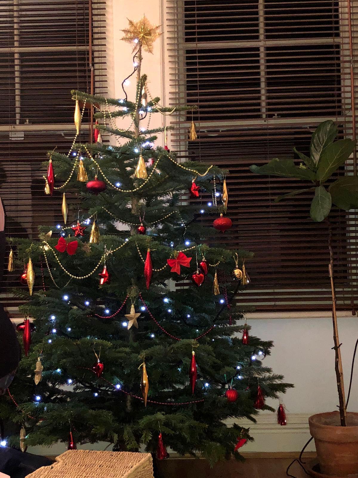 Our Xmas tree.